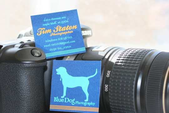 Blue Dog Photography Business Card