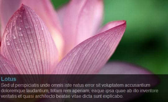 Simple JQuery Image Slide Show with Semi-Transparent Caption