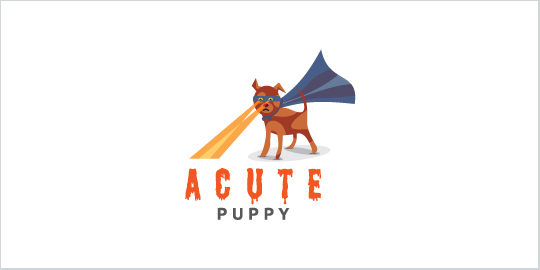 Acute Puppy