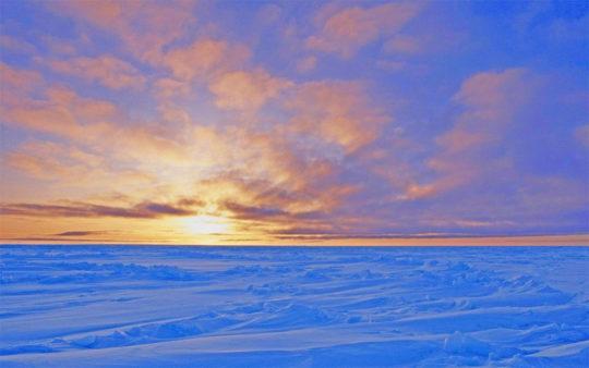 Canadian Snow Desert