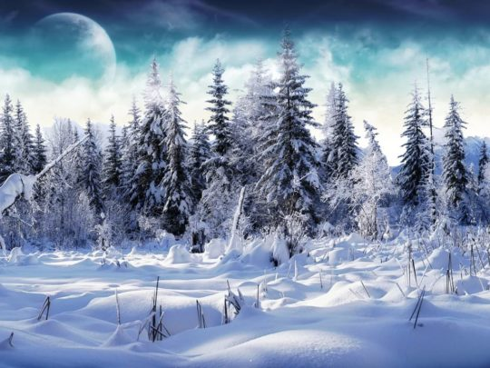 Heavy Snow Wallpaper