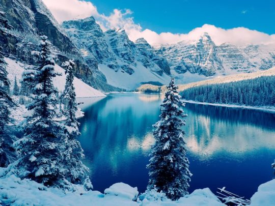 Wonderful Winter Scene
